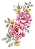 De bloem van de waterverfillustratie Stock Foto's