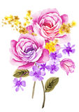 De bloem van de waterverfillustratie op eenvoudige achtergrond Stock Afbeeldingen