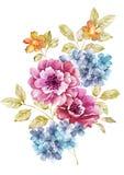 De bloem van de waterverfillustratie op eenvoudige achtergrond Royalty-vrije Stock Afbeelding