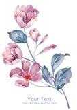 De bloem van de waterverfillustratie op eenvoudige achtergrond Royalty-vrije Stock Foto's