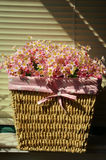 De bloem van de zijde in rotanmand Stock Fotografie