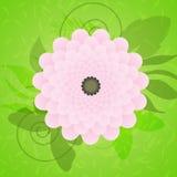 De bloem van de zomer vector illustratie