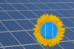 De bloem van de zon en zonenergie Stock Fotografie