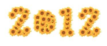 De bloem van de zon op witte achtergrond 2012 Stock Foto's