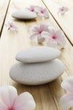 De bloem van Frangipani en witte steen Royalty-vrije Stock Foto's
