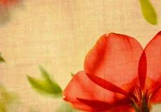 De bloem van Grunge Stock Afbeeldingen