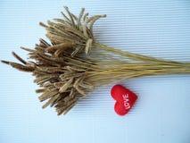 De bloem van het gras en het teken die hart tonen Stock Afbeelding