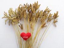 De bloem van het gras en het teken die hart tonen Royalty-vrije Stock Fotografie