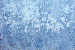 De bloem van het ijs Stock Afbeeldingen