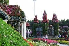 De bloem van de het Mirakeltuin van Doubai Stock Foto