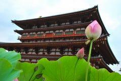 De bloem van Lotus met tempelachtergrond royalty-vrije stock foto