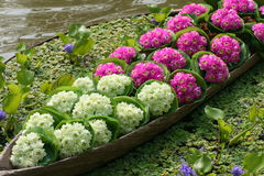 De bloem van Lotus in schip Stock Foto's