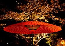 De bloem van nachtsakura en rode parasol, Kyoto Japan Royalty-vrije Stock Afbeelding