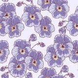 De bloem van Pansies Stock Afbeeldingen