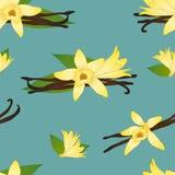 De Bloem van vanilleplanifolia op Indigo Teal Blue Background Vector illustratie Stock Fotografie