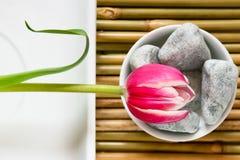 De bloem van Zen Stock Foto's