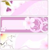De bloembanner van de lente met sakura stock illustratie