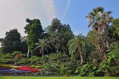 De bloembedden in een exotisch park stock fotografie