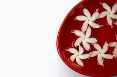 De bloemblaadjes van de jasmijn in water in een rode kom Royalty-vrije Stock Foto