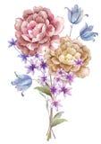 De bloemboeket van de waterverfillustratie op eenvoudige achtergrond Stock Foto
