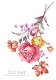 De bloemboeket van de waterverfillustratie op eenvoudige achtergrond Stock Foto's