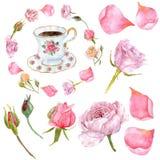 De bloemboeketten van waterverfpioenen en bloemenhertengeweitakken royalty-vrije illustratie
