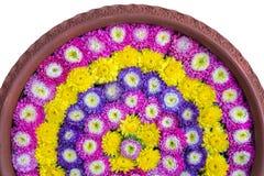 De bloemen die op het water in het aardewerkbassin drijven isoleren witte achtergrond Royalty-vrije Stock Afbeeldingen