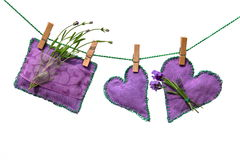 De bloemen en de kussens van de lavendel Royalty-vrije Stock Foto's