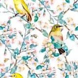 De bloemen en de vogels van de lente Patroon watercolor Vector Bloeiende tak Stock Foto