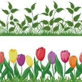 De bloemen en het gras, plaatsen naadloos vector illustratie