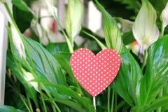 De bloemen en het hart Royalty-vrije Stock Foto's