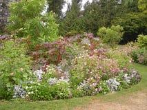 De bloemen en de installaties van de parktuin Royalty-vrije Stock Foto's