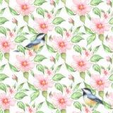 De bloemen en de vogels van de lente Bloemen naadloos patroon 6 stock illustratie