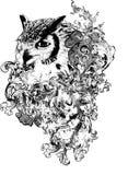 De bloemen Illustratie van de Uil Stock Afbeelding