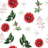 De bloemen, de kruiden en de bessen naadloos patroon van de de herfstdahlia royalty-vrije stock foto's