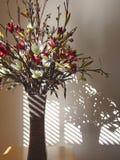 De bloemen stellen vormen en lijnen in de schaduw Stock Afbeelding