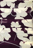 De bloemen Textuur van de Stof Royalty-vrije Stock Afbeeldingen