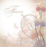 De bloemen valentijnskaart van de ontwerpprentbriefkaar Royalty-vrije Stock Afbeelding