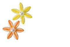 De Bloemen van Applique Stock Afbeeldingen