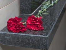 De bloemen van de anjer op een herdenkingsplaat Royalty-vrije Stock Foto's