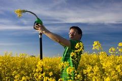 De bloemen van de brandstof stock afbeeldingen