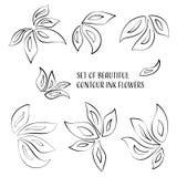 De bloemen van de contourinkt Stock Afbeeldingen