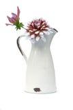De bloemen van de dahlia stock fotografie