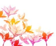 De bloemen van de de lentewaterverf Stock Foto's
