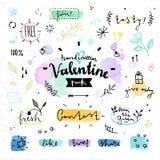 De bloemen van de de Valentijnskaartendag van tekeningselementen vectorgrafiek Stock Fotografie