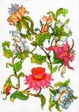 De bloemen van de fantasie Vector Illustratie
