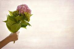 De bloemen van de handholding Stock Foto