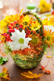 De bloemen van de herfst Stock Afbeeldingen