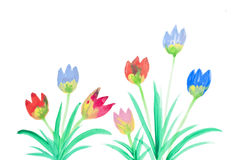 De bloemen van de kleur in waterverf Stock Foto's