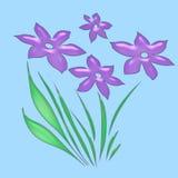 De bloemen van de lavendel op wit Royalty-vrije Stock Foto